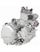 Olio Motore 2T